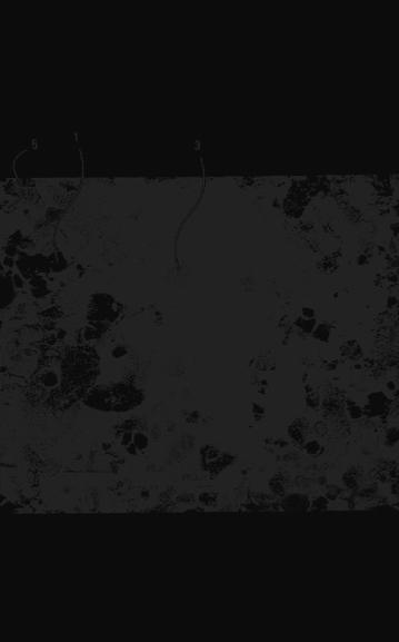 Benuatoto : benuatoto - traffic statistics - HypeStat